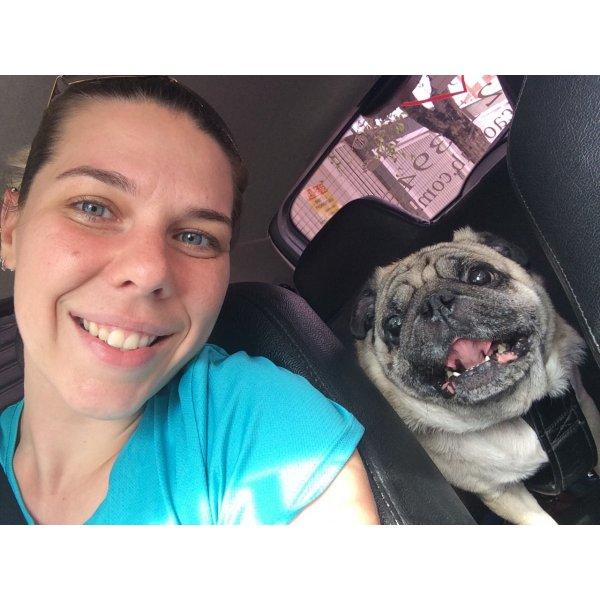 Serviço Dog Sitter Quero Contratar na Vila Guarani - Serviço Dog Sitter