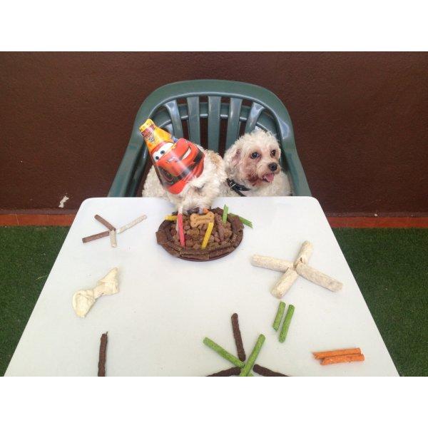 Serviços de Adestrador de Cães Quanto Custa no Jardim Riviera - Adestrador de Cães em São Bernardo