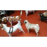 Babá para Cachorros preço na Vila Gilda