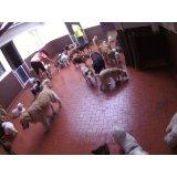 Babá para Cães valores na Vila Camilópolis