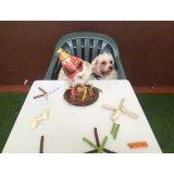 Serviços de Adestrador de Cães quanto custa no Pacaembu